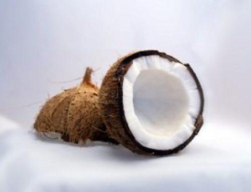 Kokosöl günstig kaufen