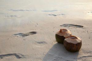 rezepte mit kokoswasser