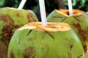 trinkkokosnuss kokoswasser frisch aus der kokosnuss