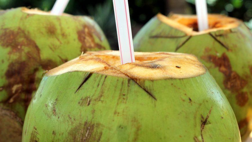Gewinnung von Kokoswasser