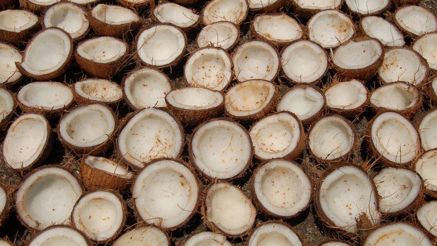 Kokoswasser kaufen – Tipps und aktuelle Angebote
