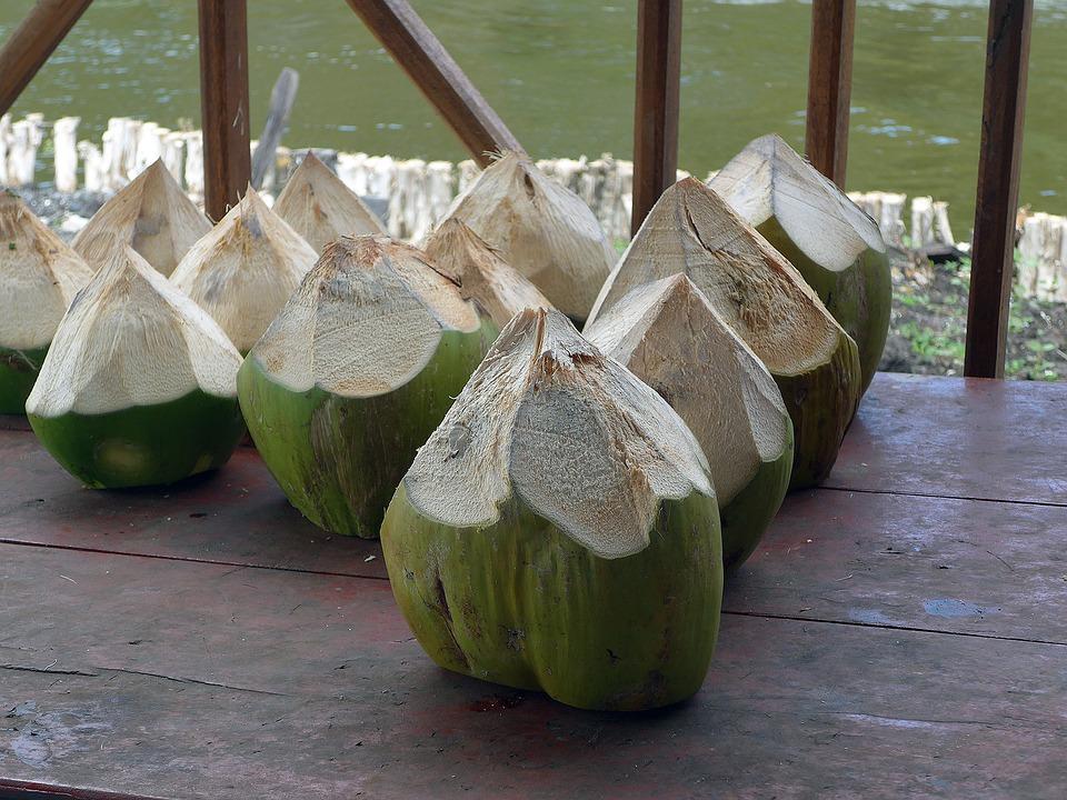 trinkkokosnuss ist eine spezielle kokosnuss