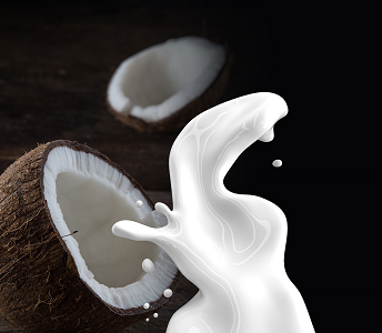 kokosmilch und kalorien